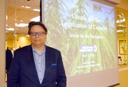 Chamber held weed workplace workshop