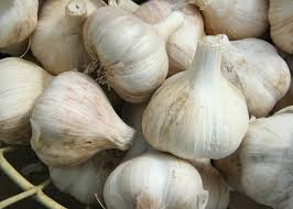 The Eastern Ontario Garlic Festival is this weekend