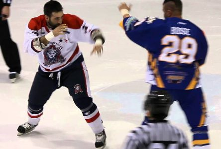 River Kings enforcer back for 10th LNAH season