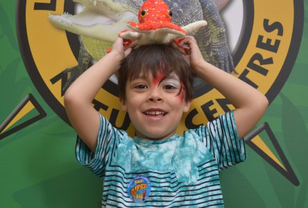 Thousands flock to Little Ray's Wildlife Festival