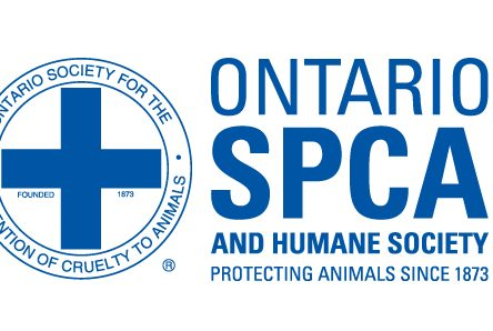 Ontario SPCA to discontinue animal cruelty enforcement