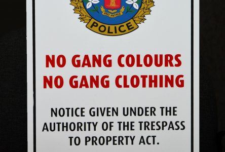 CPS launches No Gang Colours, No Gang Clothing program