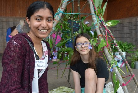 Plant Festival focuses on sustainability