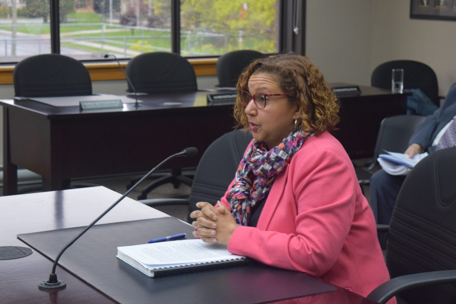 Election Audit Committee hears complaints against Mayor