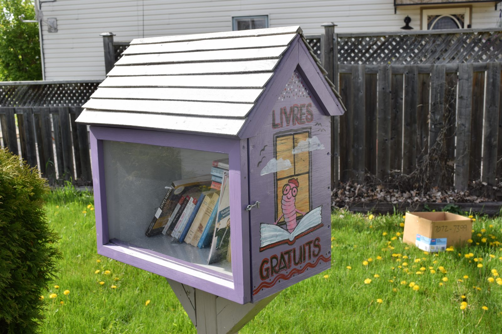 Towns vie for little free library