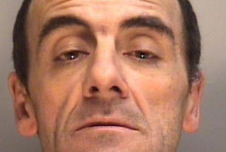 One arrested after drug bust on Prince Arthur