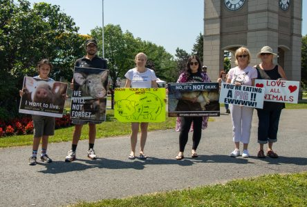 Protesters against meat at Cornwall Ribfest