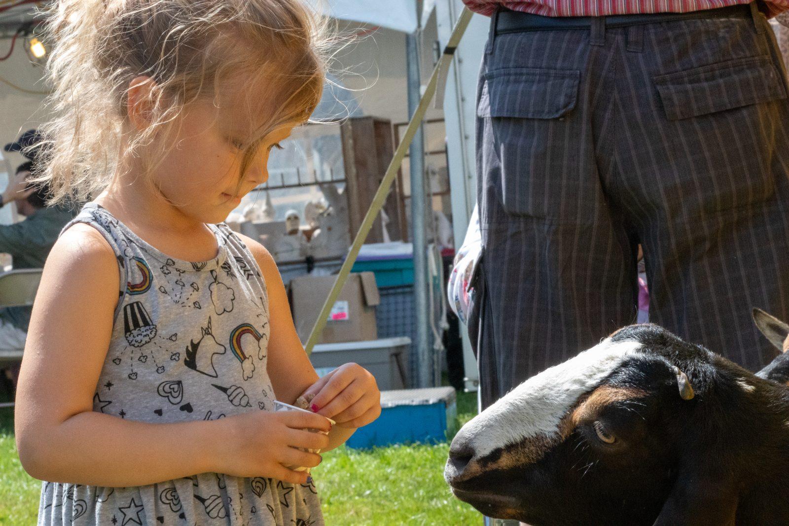 Williamstown Fair returns this September