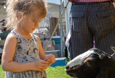 History on display at 208th Williamstown Fair
