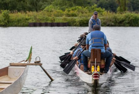 Dragons racing on the canal at Cornwall Waterfest