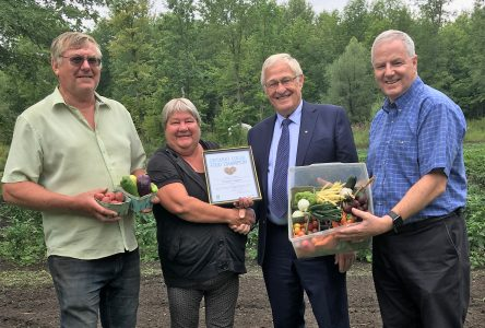 Brenda's Veggies recognized as provincial Food Champion