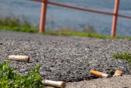 Council moves to ban smoking from all public parks