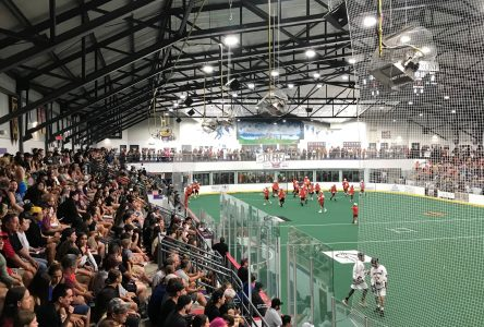 Packed house for Provincial Lacrosse finals