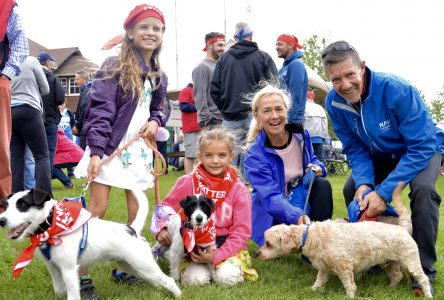 Locals stroll along waterfront for Parkinson SuperWalk