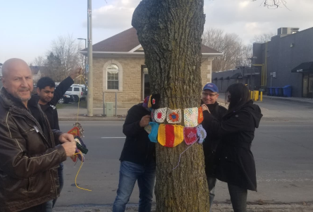 Tree cozies memorialize victims of violence