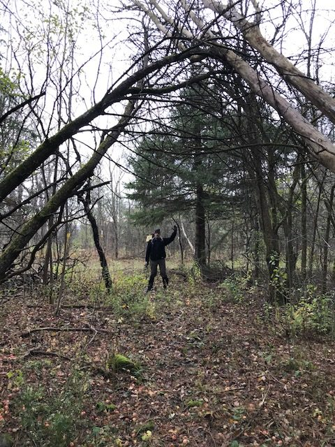 Summerstown Trails cleans-up after wind storm