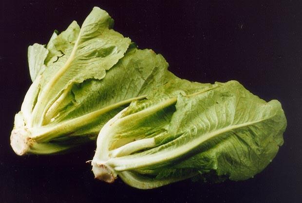 Canadians cautioned amidst U.S. romaine lettuce recall