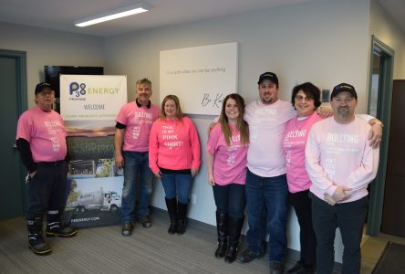 Cornwall goes pink for a day