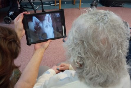Donated iPads support seniors
