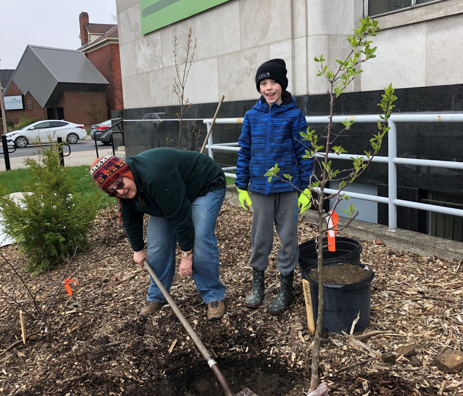 Tiny forest installed at Cornwall Library