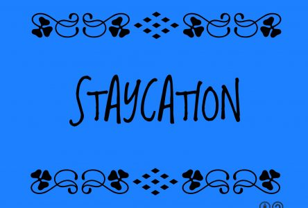 "SDG Tourism promotes the ""Staycation"""