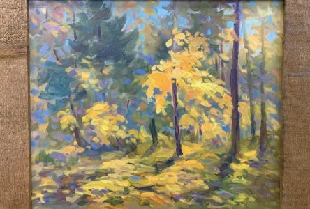 SNC to hold Arts for Trees fundraiser