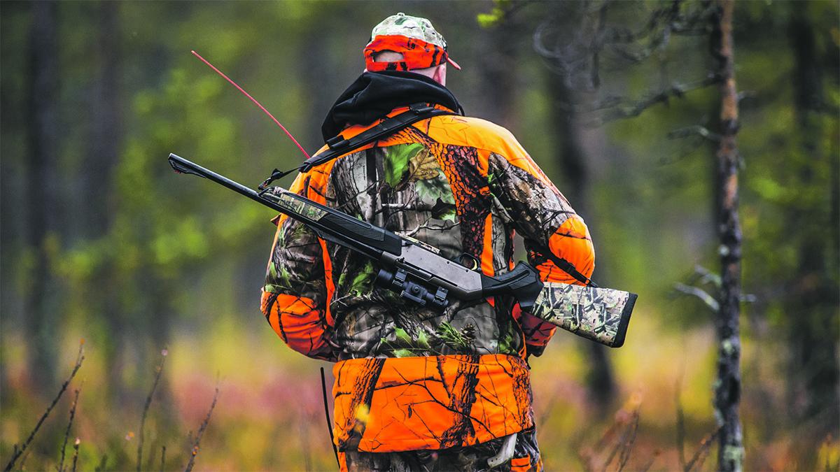 Opportunités de chasse sur les terres de la CNS à l'approche de l'automne