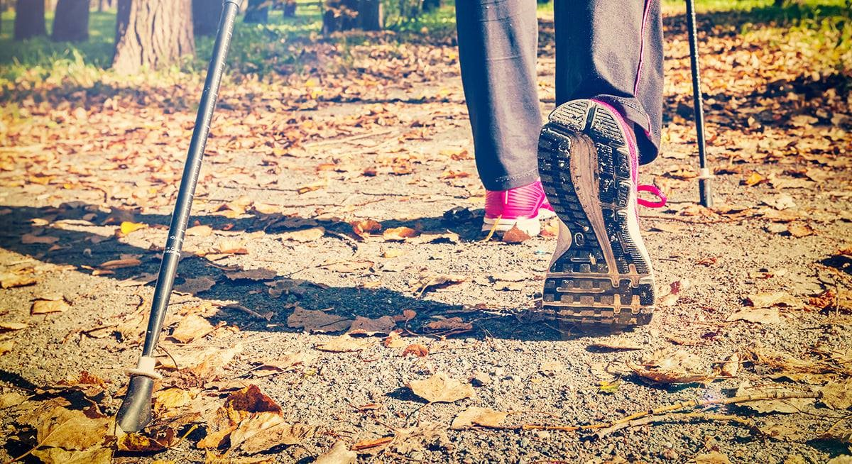 Take a Ski Walk at the Summerstown Trails