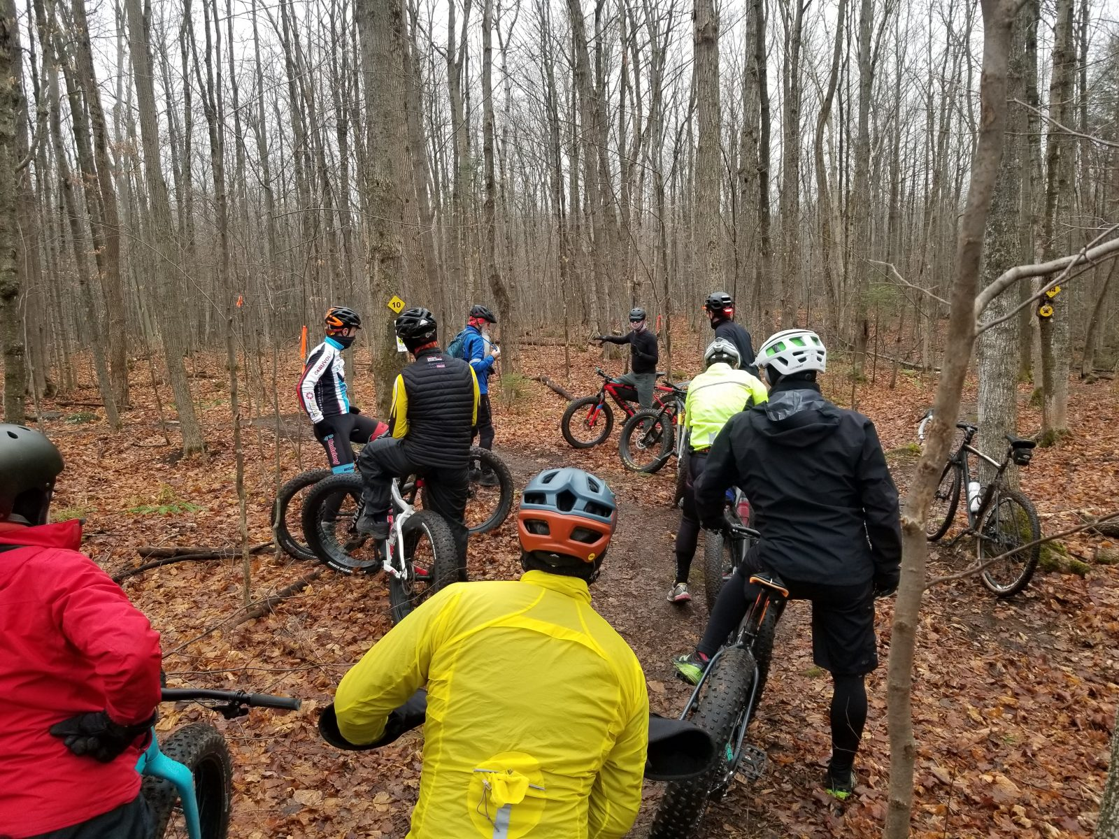 New trail showcased at Summerstown Trails