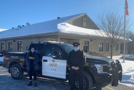 Early successes for OPP mental health pilot project