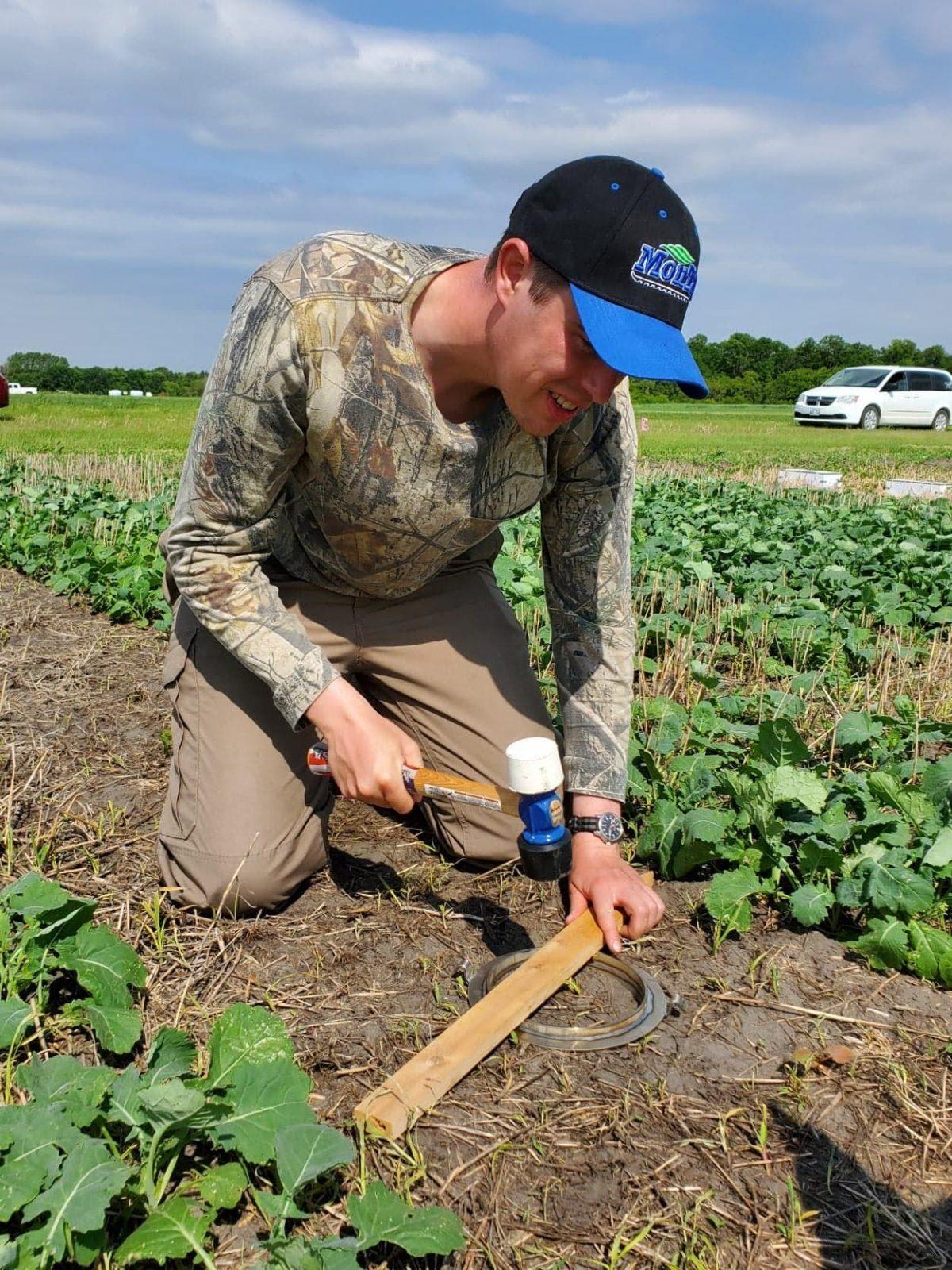 Survey seeks feedback on cover crops