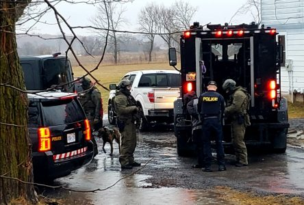 OPP seize weapons in South Dundas