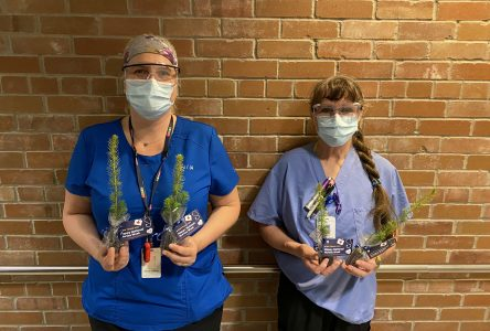 CCH celebrates National Nursing Week