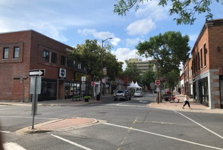 OPINION: Open up to the idea of an open Pitt St.