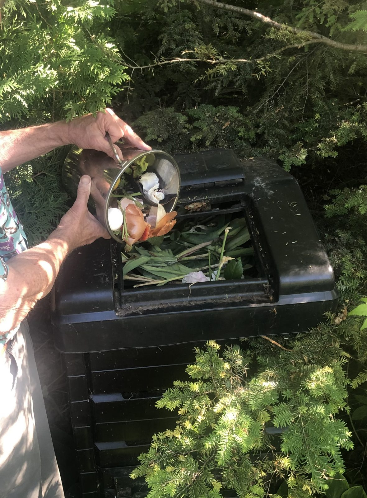 From Kitchen and Garden Waste to Gardening Gold