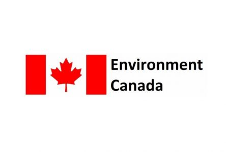 Air Quality statement issued for Cornwall area July 25