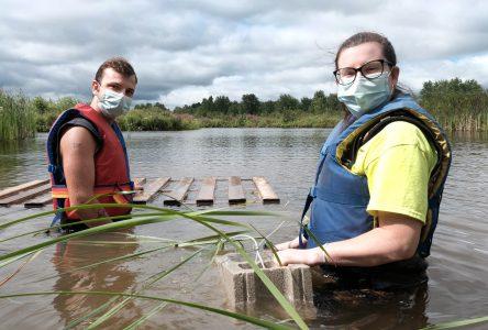RRCA installing new turtle basket platforms at Cooper Marsh