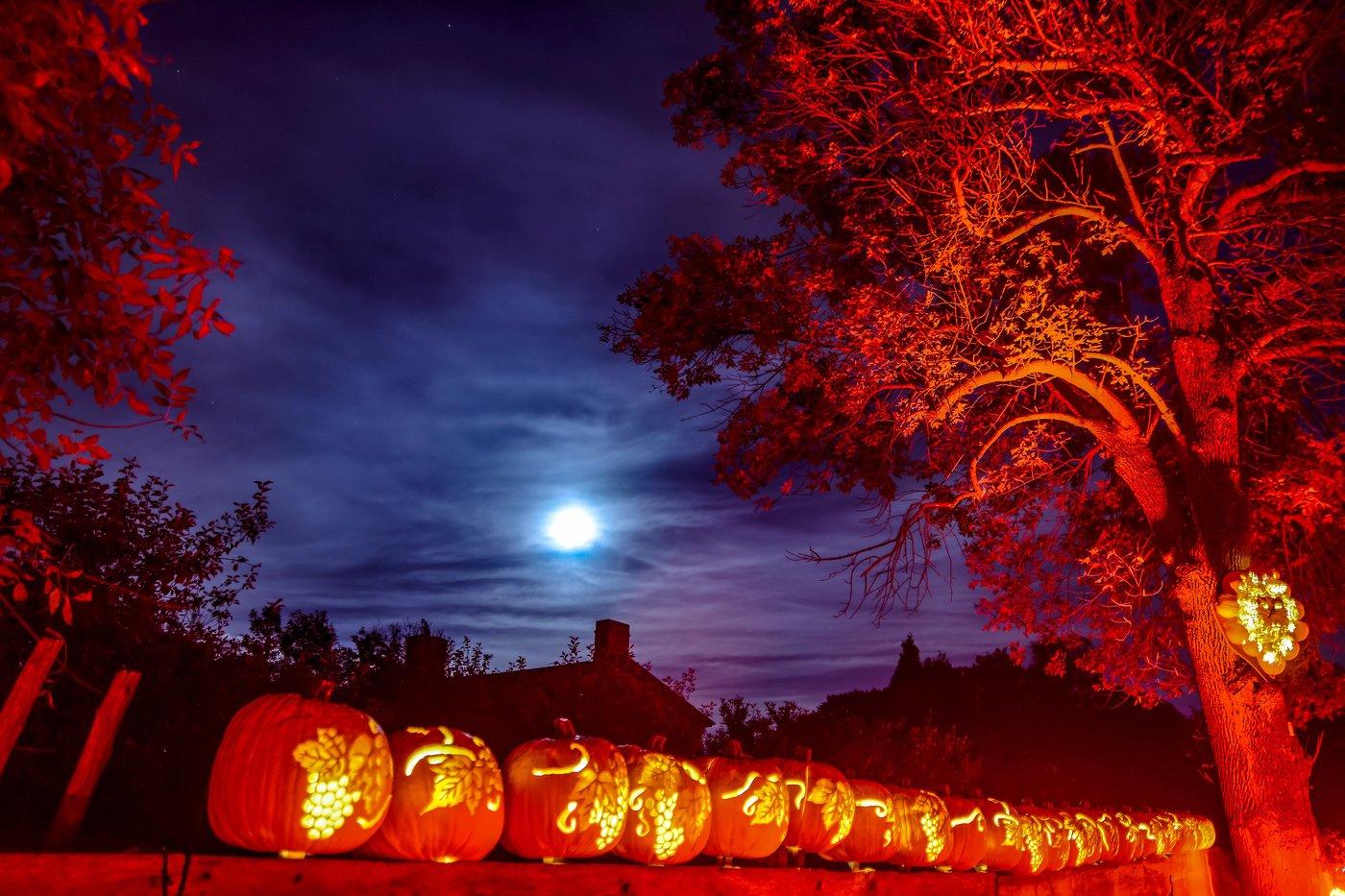 Tenth season for Pumpkinferno